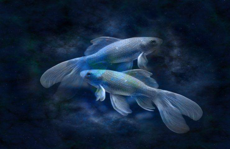 Pesci caratteristiche segno zodiacale