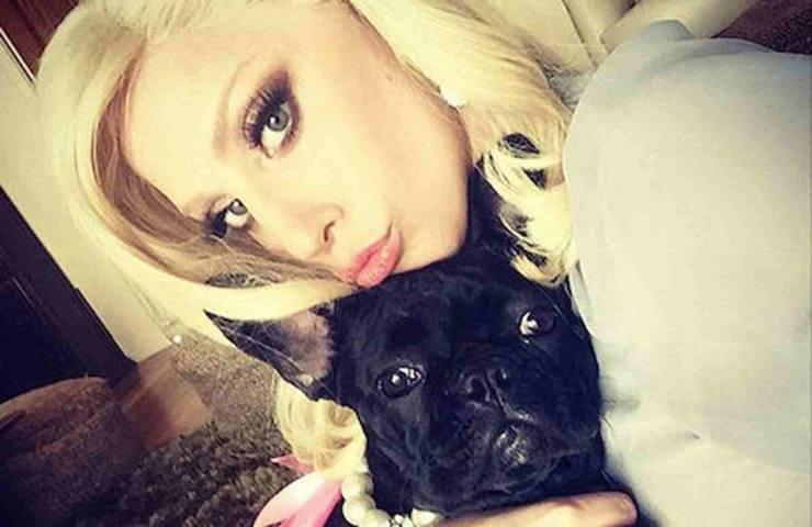 Lady Gaga cani rapiti ritrovati